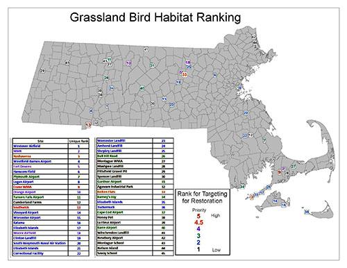 grasslandbirdhabitat